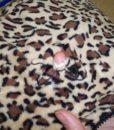 Dospělé dupačky 5 - Teddy leopard - vada